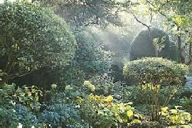 Garten: De Kempenhof - In den Übergangsbereichen zwischen Licht und Schatten herrscht oft eine besondere Atmosphäre. - Foto: PdM/Jürgen Becker