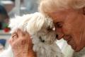 Tiere erobern Seniorenheime