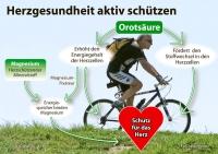 Wer Ausdauersport betreibt, sollte an sein Herz denken und auf eine gute Magnesium-Versorgung achten. - Foto: djd/Wörwag