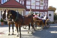 Bei einer Kutschfahrt können die Besucher Bad Harzburgs Schönheiten entdecken. - Foto: djd/Stadtmarketing Bad Harzburg