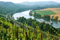 An den Hängen des Mains bei Karlstadt wird Wein angebaut. Eine Verkostung beim Winzer ist jederzeit möglich. - Foto: djd/TVF/Fränkisches Weinland/Andreas Hub