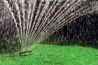 Während der Hitzeperioden im Sommer bleibt der Rasen grün und kräftig, wenn er in den Morgen- oder Abendstunden ordentlich gewässert wird. - Foto: djd/Viking