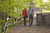 Auf Schusters Rappen unterwegs: Rund um Bad Driburg kann man zwischen 60 ausgeschilderten Wanderwegen auswählen. - Foto: djd/Bad Driburger Touristik GmbH/Teutoburger Wald Tourismus
