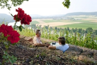 Romantisch: Die Weinberge rund um Karlstadt laden zum Verweilen ein. - Foto: djd/TVF/Fränkisches Weinland/Andreas Hub