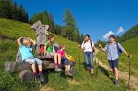 Ein schöner Familienwanderurlaub lässt sich beispielsweise am Salzburger Almenweg verbringen. - Foto: djd/TVB Großarl/Gruber Michael
