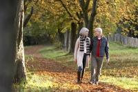 Auch für Senioren und Ungeübte ist Wandern ein hervorragender Ausgleich. Wichtig ist, sich nicht zu übernehmen und genügend Pausen einzuplanen. - Foto: djd/Traumeel/corbis