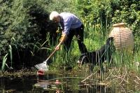 Im Herbst gibt es im Gartenteich einiges zu tun, damit Pflanzen und Tiere im feuchten Idyll sicher und wohlbehalten durch den Winter kommen. - Foto: djd/Söchting Biotechnik