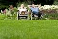 Tipps für Hobbygärtner: Wellness für den Rasen