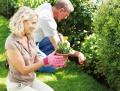 Gesund gärtnern – Rücken schonen
