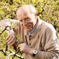 Gestürzt im Garten? Schnelle Hilfe für Senioren