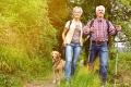 Hunde und Senioren? Passt!