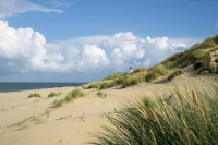 Die charakteristische Dünenlandschaft von Sylt lädt zu stundenlangen, entspannenden Spaziergängen ein. Foto: djd | Kurverwaltung List auf Sylt