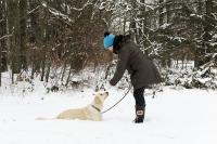 Gesund mit Hund? Foto: ERGO Versicherungsgruppe