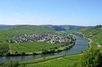 Traumblick: Die Moselschleife zwischen Leiwen und Trittenheim.  Foto: djd | roemische-weinstrasse.de