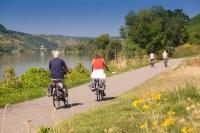 Der Mosel-Radweg gilt als Königin der Premium-Radrouten im Moselland.  Foto: djd | roemische-weinstrasse