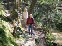Auf ausgedehnten, gut ausgeschilderten Rundwegen können Wanderer die Reize der Naturlandschaft entdecken.   Foto: djd | Teutoburgerwald Tourismus/SHS