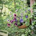 Gestaltungsideen für einen kreativen Garten