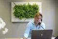 Grüne Arbeitsplätze - Mehr Pflanzen ins Büro!