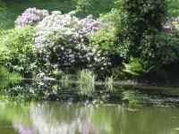 Wasser bringt Leben in den Garten: Schon der Anblick des kühlen Nasses erzeugt ein Wohlgefühl. Foto: BGL