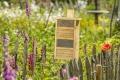 Wildbienen gezielt unterstützen