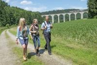 Das Wahrzeichen Altenbekens, der Viadukt-Wanderweg, bietet immer wieder grandiose Ausblicke auf den bis zu 35 Meter hohen Viadukt. Foto: epr/Teutoburger Wald/Touristikzentrale Paderborner Land e.V.