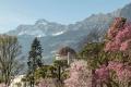 Im Frühjahr entfaltet sich rund um Meran eine bunte Blütenpracht