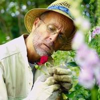 Immer mit Handschuhen arbeiten: Das schützt die Haut und hält Keime fern. Foto: djd/Hermes Arzneimittel/image source